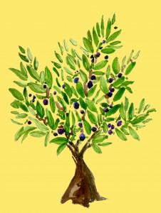 autour-de-l'olivier